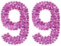 Número árabe 99, noventa y nueve, de las flores de la lila, aisladas Imagenes de archivo