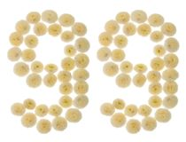 Número árabe 99, noventa y nueve, de las flores poner crema del chrysanthe Imagenes de archivo