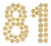 Número árabe 81, ochenta uno, de las flores poner crema del chrysanthem Fotos de archivo