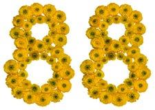 Número árabe 88, ochenta y ocho, de las flores amarillas del buttercu Foto de archivo