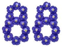 Número árabe 88, ochenta y ocho, de las flores azules del lino, aislador Fotografía de archivo libre de regalías
