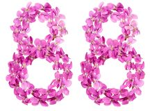 Número árabe 88, ochenta y ocho, de las flores de la viola, aisladas Imagenes de archivo