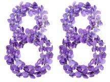Número árabe 88, ochenta y ocho, de las flores de la viola, aisladas Imagen de archivo libre de regalías