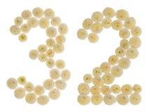 Número árabe 32, treinta y dos, de las flores poner crema del chrysanthem Fotos de archivo libres de regalías