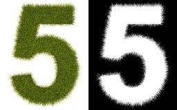 Número 5 de la hierba con el canal alfa Foto de archivo libre de regalías