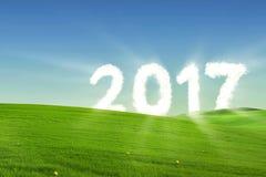 Número brillante 2017 en el prado medio Imágenes de archivo libres de regalías