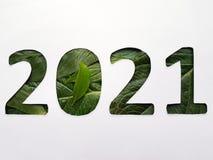 número 2021 con textura verde de la hoja y el fondo blanco Foto de archivo