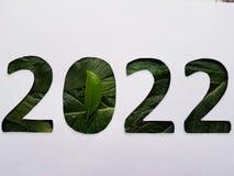 número 2022 con textura verde de la hoja y el fondo blanco Imagen de archivo libre de regalías