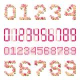 Número das flores de cereja ilustração royalty free