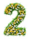 Número 2 de grama verde e de flores Fotografia de Stock Royalty Free