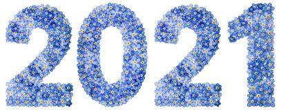 Número 2021 de las flores azules de la nomeolvides, aisladas en blanco Imagen de archivo libre de regalías