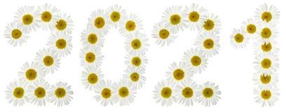 Número 2021 de las flores blancas de la manzanilla, aisladas en blanco Fotografía de archivo libre de regalías