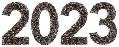 Número 2023 del negro un carbón de leña natural, aislado en los vagos blancos Imagen de archivo libre de regalías