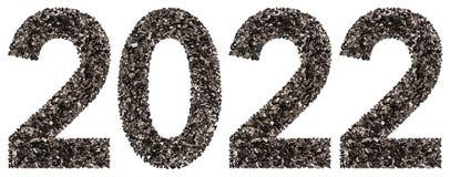 Número 2022 del negro un carbón de leña natural, aislado en los vagos blancos Foto de archivo