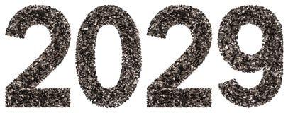 Número 2029 del negro un carbón de leña natural, aislado en los vagos blancos Foto de archivo