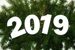 Número dois mil e dezenove em ramos verdes do abeto no fundo claro Conceito creativo Configuração mínima do plano Fotografia de Stock Royalty Free
