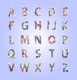 Número e alfabeto de papel do rasgo Imagem de Stock