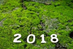 Número 2018 en fondo verde del musgo Fotos de archivo libres de regalías
