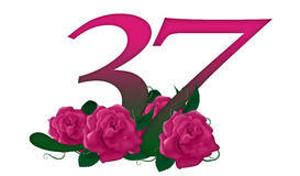 Número 37 floral fotos de archivo libres de regalías