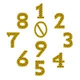 Número isolado do girassol Fotos de Stock Royalty Free