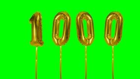 Número 1000 mil años del cumpleaños del aniversario de globo del oro que flota en la pantalla verde - almacen de video