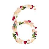 Número seis com flores Fotos de Stock Royalty Free