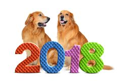 Números coloridos 2018 com os dois cães no fundo Foto de Stock Royalty Free