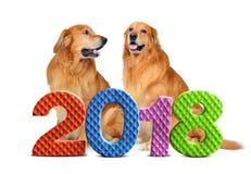 Números coloridos 2018 con dos perros en el fondo Foto de archivo libre de regalías