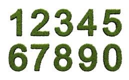 Números da grama ilustração do vetor