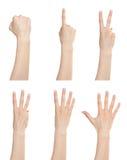 Números de contagem ajustados do gesto de mão imagem de stock