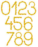 Números de folhas do outono Foto de Stock
