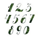 Números de la acuarela Fotografía de archivo