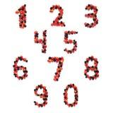 Números de las frutas Imagenes de archivo