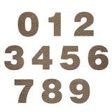 Números del cuero Imagen de archivo libre de regalías