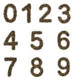 Números del té Foto de archivo libre de regalías