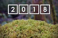 2018 números do ano novo sobre Moss Covered Green Stone nas madeiras, com fundo borrado Fotografia de Stock