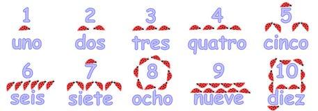 Números espanhóis para crianças Fotografia de Stock