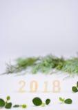 Números feitos da madeira com folhas verdes verticais Fotografia de Stock Royalty Free