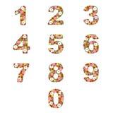 Números florais ilustração stock
