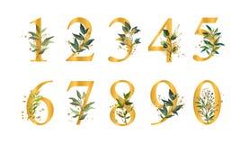 N?meros florales de oro con las hojas verdes y las salpicaduras del oro aisladas stock de ilustración