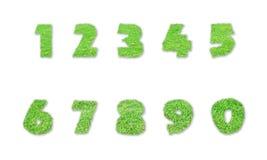 Números hechos de hierba verde en blanco Imágenes de archivo libres de regalías