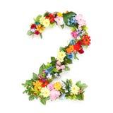 Números hechos de hojas y de flores Imagen de archivo libre de regalías