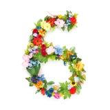 Números hechos de hojas y de flores Fotos de archivo libres de regalías