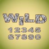 Números que imitan la piel de la cebra Imagen de archivo libre de regalías