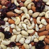 Nüsse: Acajoubäume, Mandeln, Haselnüsse und getrocknete Moosbeeren Lizenzfreies Stockfoto