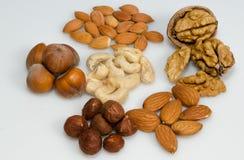 Nüsse, Aprikosensamen, Haselnüsse, Mandeln und Acajoubaum Lizenzfreies Stockbild