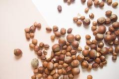Nüsse auf Weiß Stockfoto