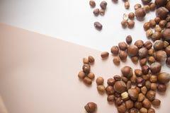 Nüsse auf Weiß Stockfotos