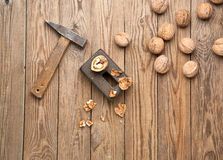 Nüsse aufgespalteter Hammer Lizenzfreies Stockfoto