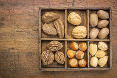 Nüsse in der rustikalen Holzkiste Stockbild